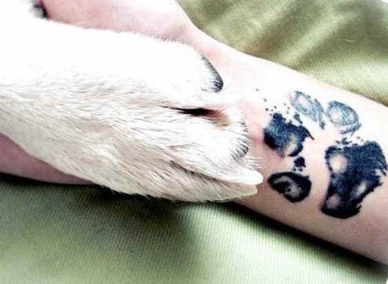 Black simple dog tattoo