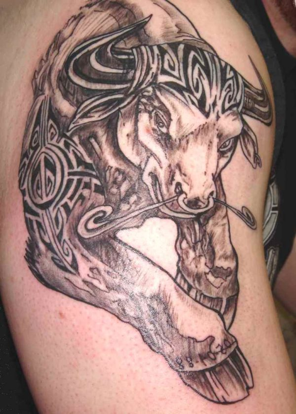 Bull tattoo arm
