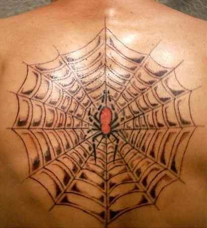 Spider web tattto big