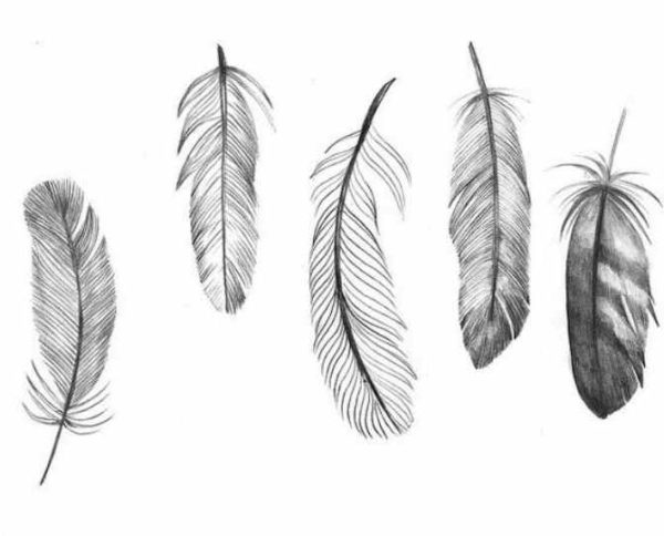Feather tattoo print of design