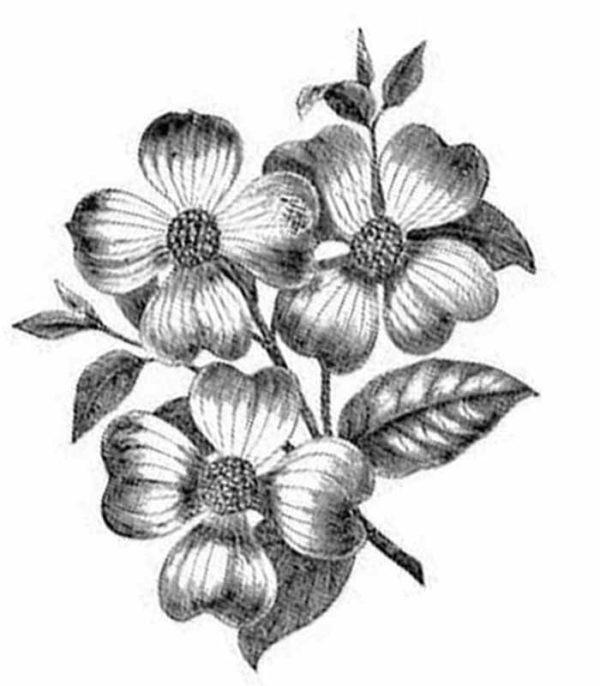 Free flower tattoo designs to print